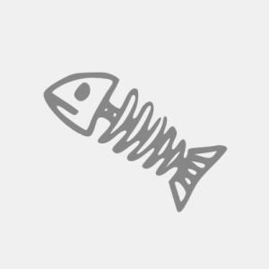 Fisch T-Shirt bedrucken