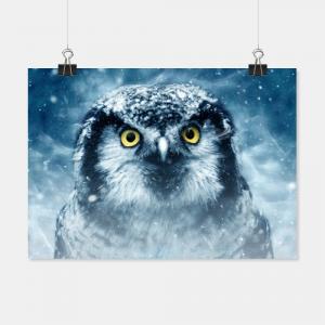 Eule im Schneegestöber als Poster oder Wandbild